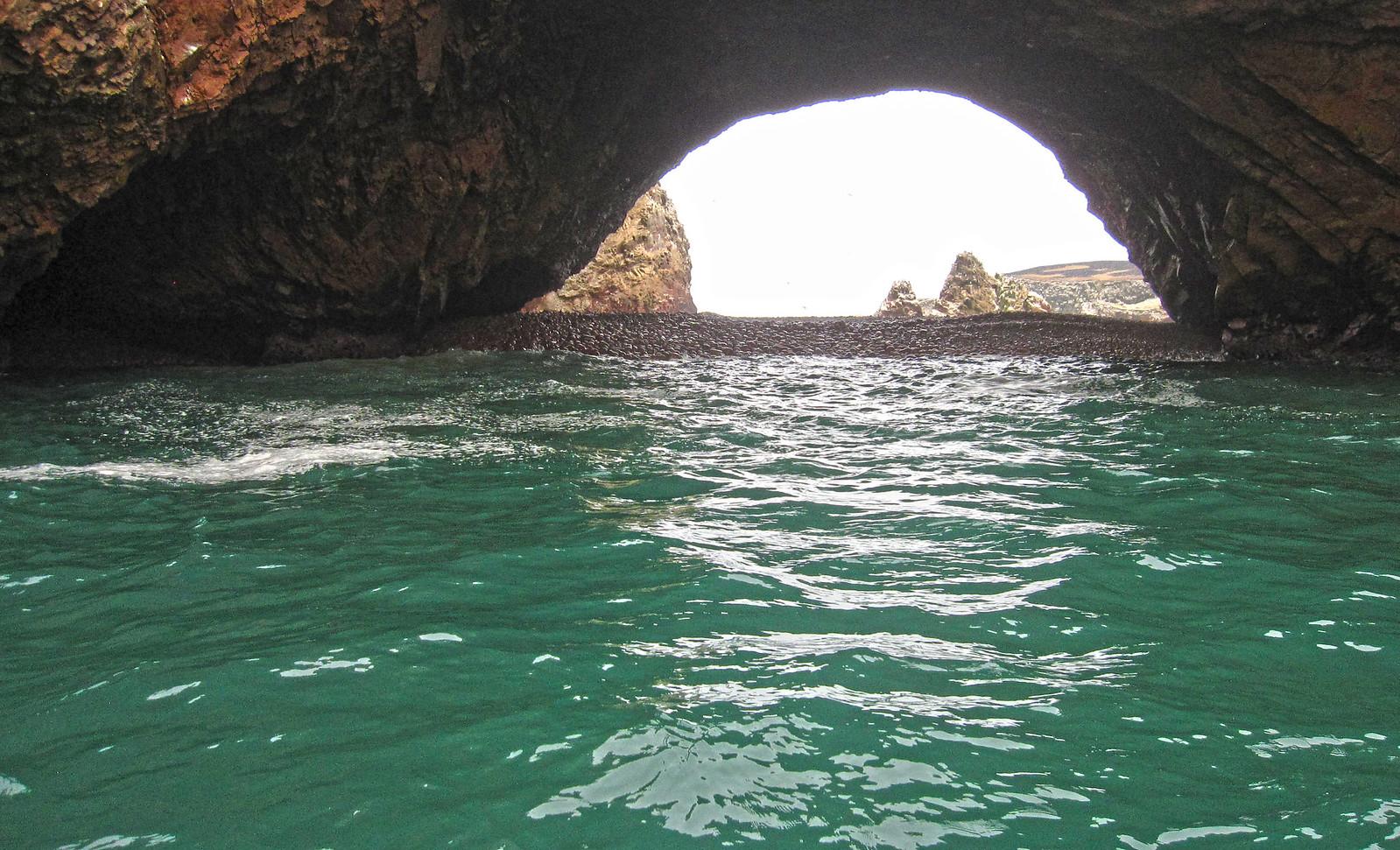 Islas Ballestas 10