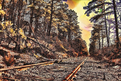 railroad autumn woods tracks nj southcentral