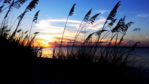 sunset beach pensacola seaoats
