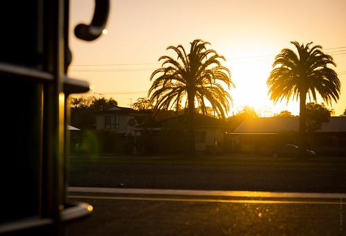 trees sunset sun station silhouette palms dusk sony platform sigma australia trainstation palmtree lensflare newsouthwales goldenlight wauchope lerps sonyalphadslr sigma1850mmf28exdcmacro sonyalphaa77v daniellerps wauchopestation