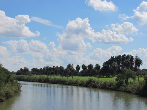 trees nature clouds reflections river texas cloudy bluesky palmtrees riogrande riverbend