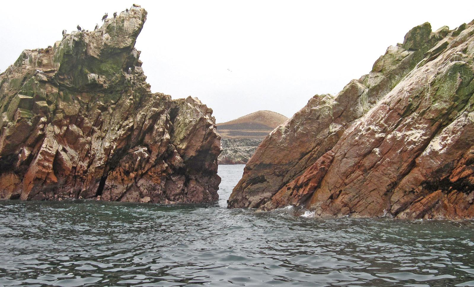 Islas Ballestas 89