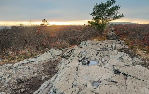 boston bluehills landscape sunset bluehillsreservation nature milton massachusetts unitedstates us