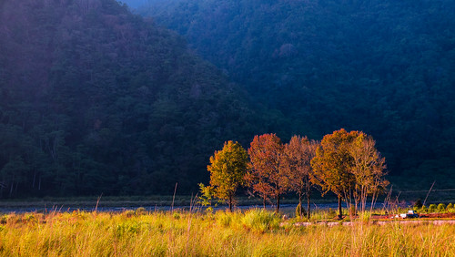 taiwan nantou sunset tree valley 台灣 南投 河谷 投83 萬豐部落