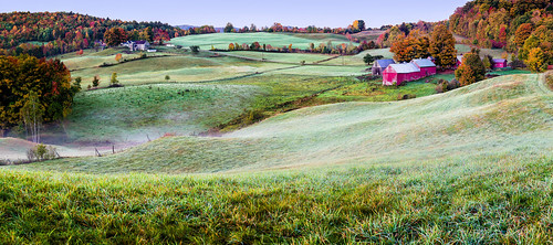 jenne farm woodstock reading vermont new england fall autumn color colorful red yellow orange green grass trees leaves field dew mist dawn pre fog early morning hills hilly country countryside barn tin roof pasture cows fence