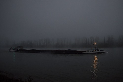 misty fog sunrise nebel fujifilm rhine rhein rheinland rhinevalley nebelig rhinelandpalatinate rhens wclx100 x100s