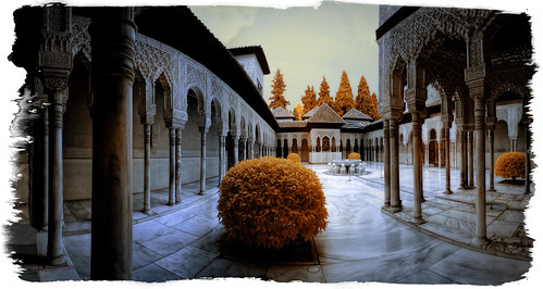Palau dels Lleons
