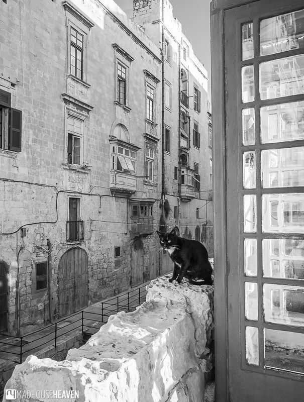 Malta - 0281-HDR