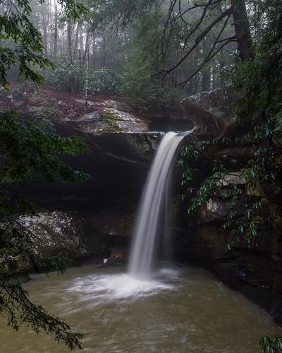 mist fog kentucky ky falls waterfalls greyhawk flatlick flatlickfalls