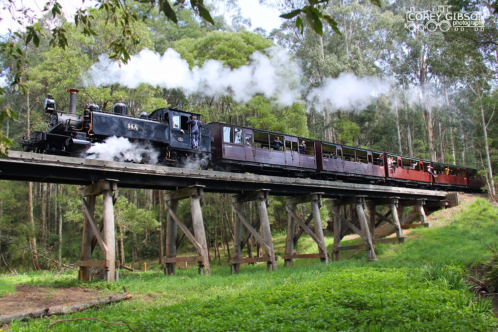 Puffing Billy Railway - 14A Trestle bridge at Cockatoo by Corey Gibson