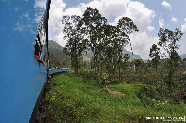 Upcountry Railway Line - Sri Lanka