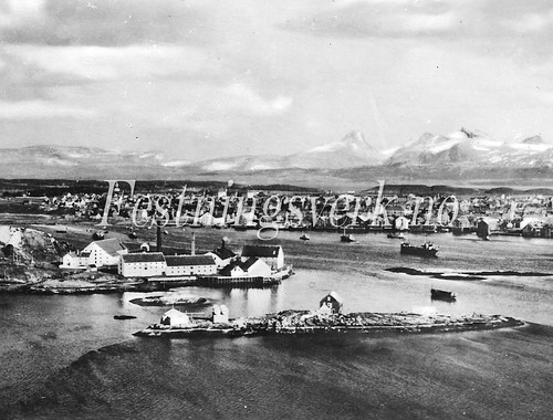 Finnmark (703)