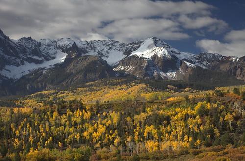 autumn trees mountains fall colors yellow colorado fallcolors aspens rockymountains ridgway sanjuanmountains 2014 ouraycounty sneffelsrange countyroad9