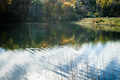 foliage autumn fall glenwood iowa laughlinc lightroom lightroom5 nikon1755mm24 nikond80 reflection trees water nikon