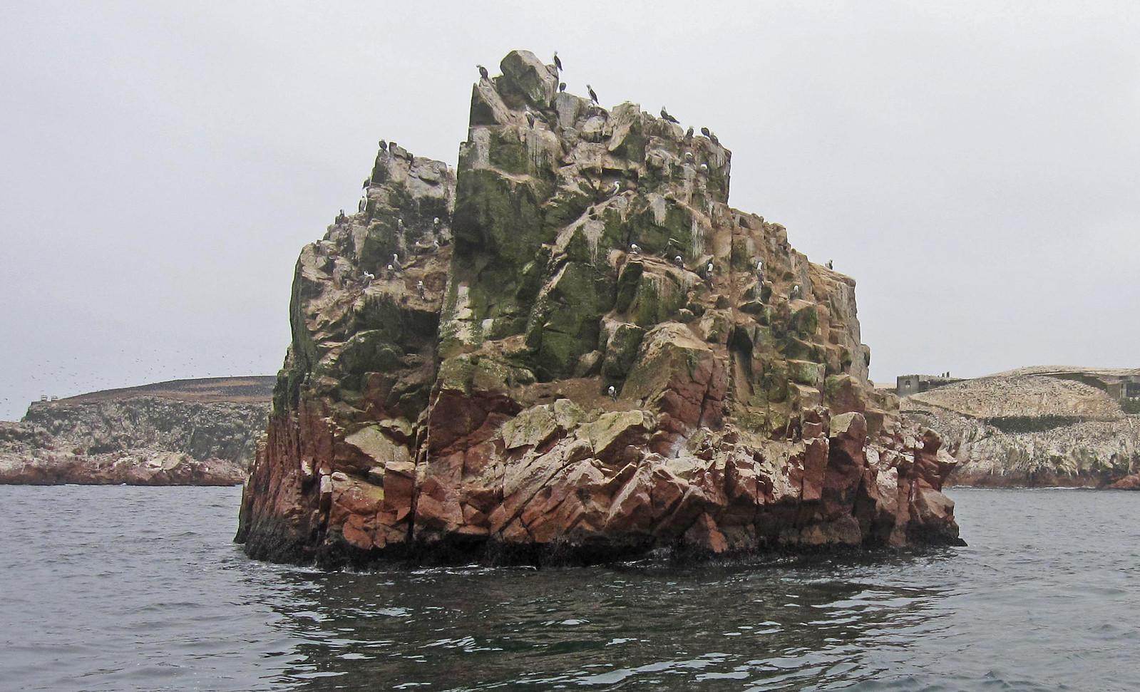Islas Ballestas 63