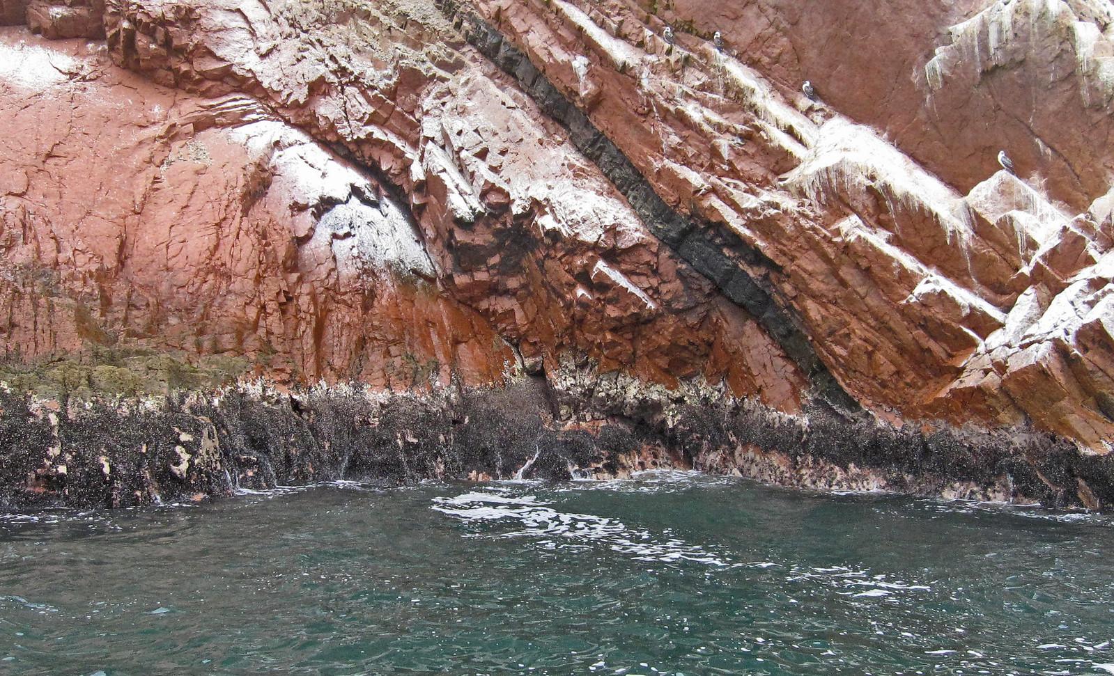 Islas Ballestas 70