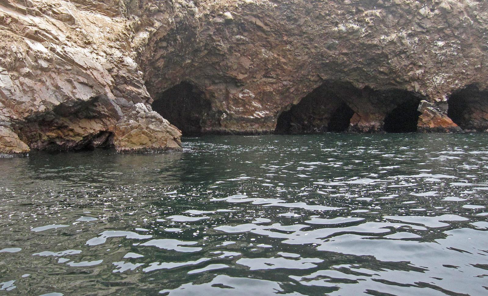 Islas Ballestas 41