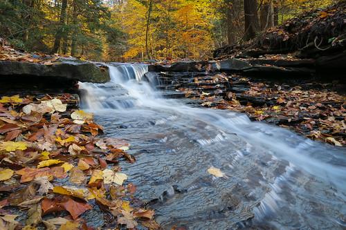 rjvtog autumn falls waterfall leaves nature ohio robvaughnphoto
