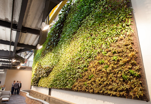 Citrix Raleigh - Living Wall | by citrixsystems