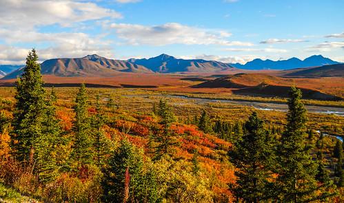 September Colors in Denali