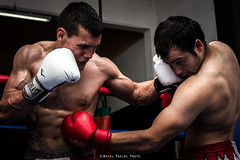 Lotus Club Kick Boxing . Ariel Pasini Photo