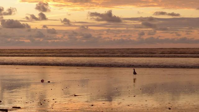 Playa de don Juan