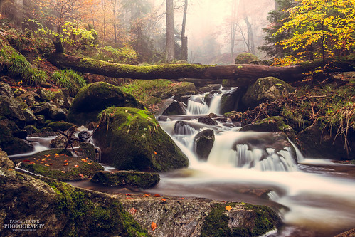 Obere Wasserfälle im Ilsetal | by diablopb