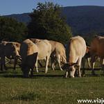 10 Viajefilos en Navarra, Piscinas de Burguete 002