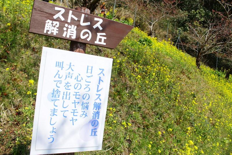 2014-03-16_00104_高松山