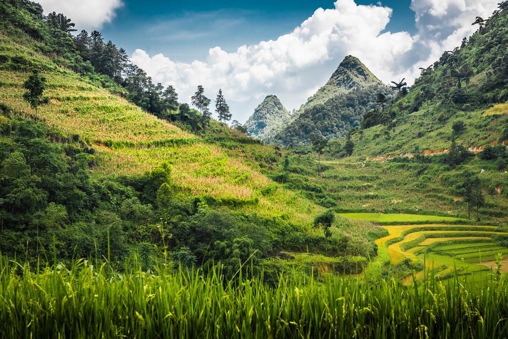 North Vietnam, near Bac Ha