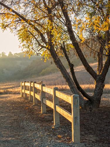 november autumn foothills nature rural canon fence landscape outdoors hiking powershot pointandshoot openspace southerncalifornia haciendaheights s100 losangelescounty oakwoodland puentehills lahabraheights powdercanyon powdercanyonesa