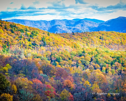 augphotoimagery blueridgeparkway autumn fall mountains nature outdoors scenic trees vegetation scottcreek northcarolina unitedstates