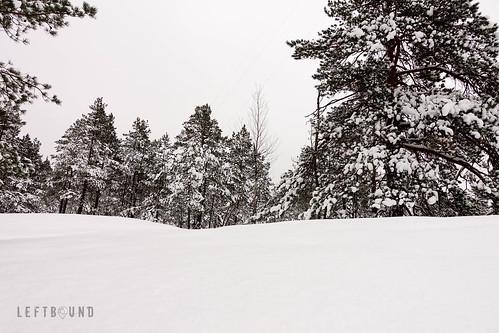 Landscaping | by Joni Palomäki