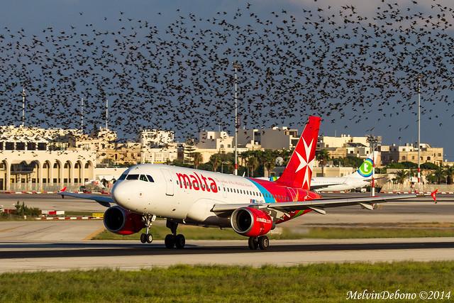 Air Malta Airbus A319  |  9H-AEL  |  LMML