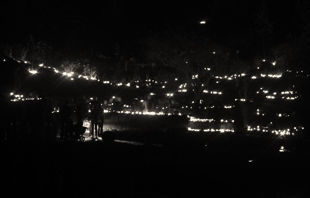 All saints' day 2014