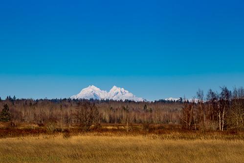coastal range mountain snow ice flats swamp forest grasslands habitat winter blue clear sky dexhorton