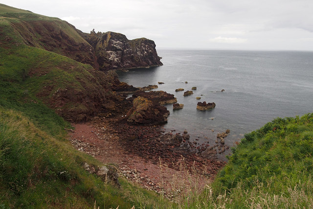 Starney Bay, St Abbs