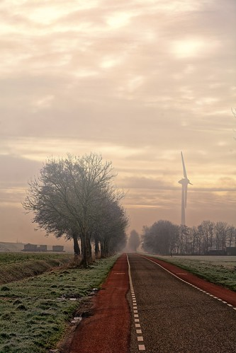 clouds frost landscape mist sunlight trees windmill wieringerwerf noordholland nederland nl nature turbine sky environment windturbine tree technology sunset cloudsky grass outdoors road generator tower environmentalconservation electricity nopeople greencolor fuelandpowergeneration