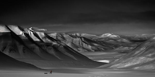 Lilliputian in Svalbard