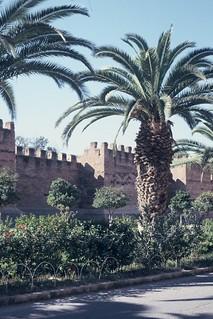 Taroudant City wall (1)