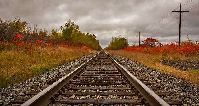 Rail Landscape Study-3755
