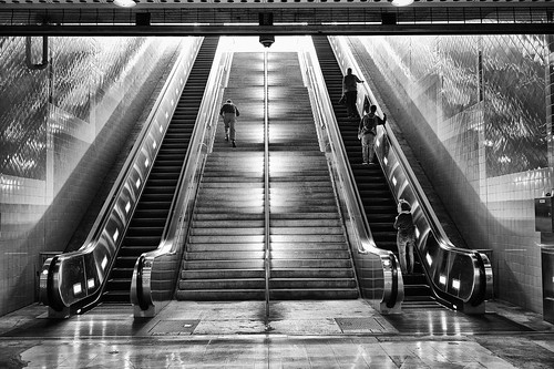 Stairs / Escalator | by macabrephotographer
