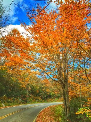 autumn fall landscape ngc grandfathermountain iphone6