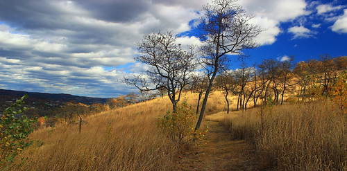 autumn trees sky mountains nature grass clouds landscape hiking pennsylvania path hills foliage trail creativecommons grassland bluemountain appalachianmountains walkingpath stratocumulus kittatinnymountain carboncounty lehighgap lehighgapnaturecenter