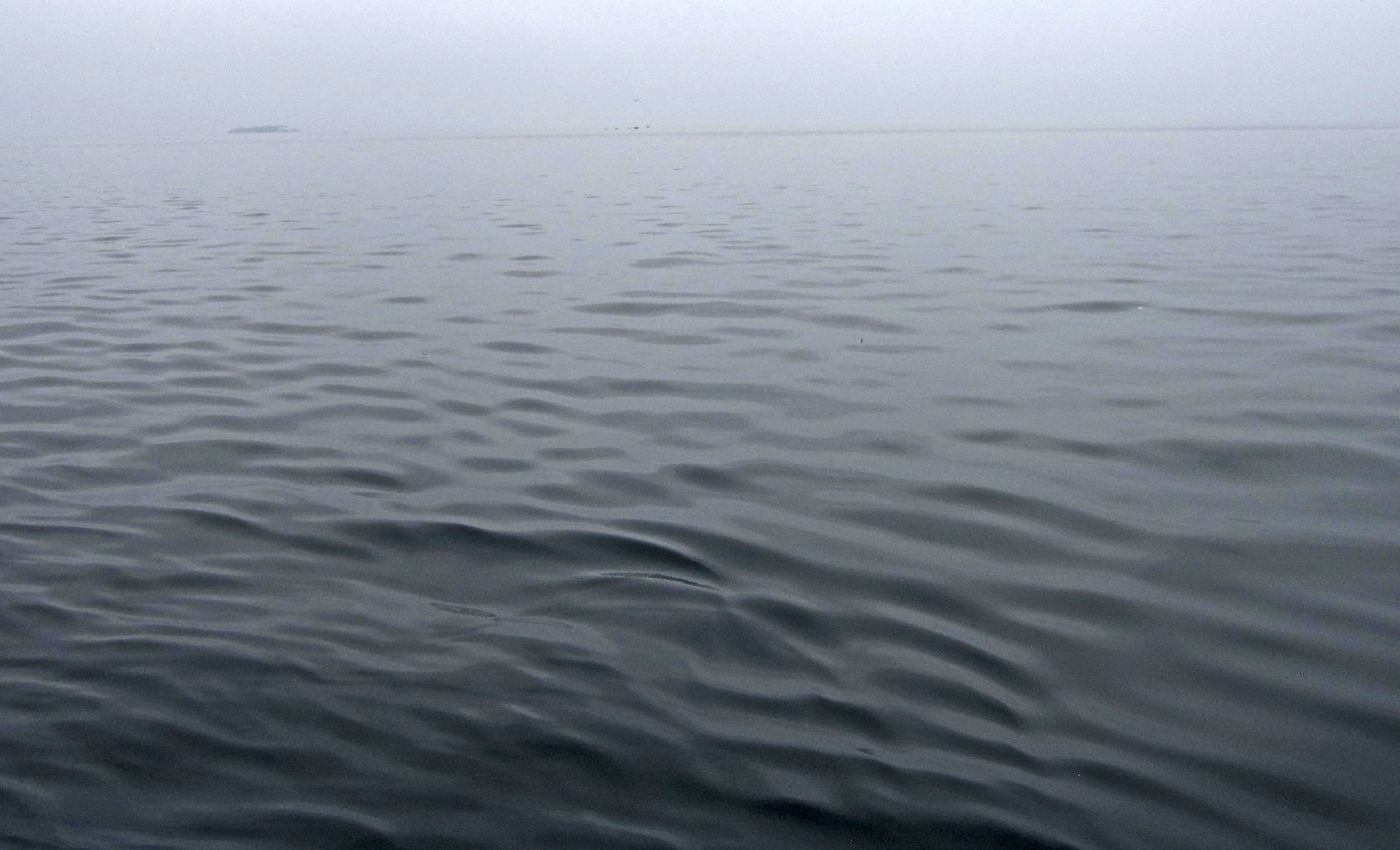 a Islas Ballestas 27