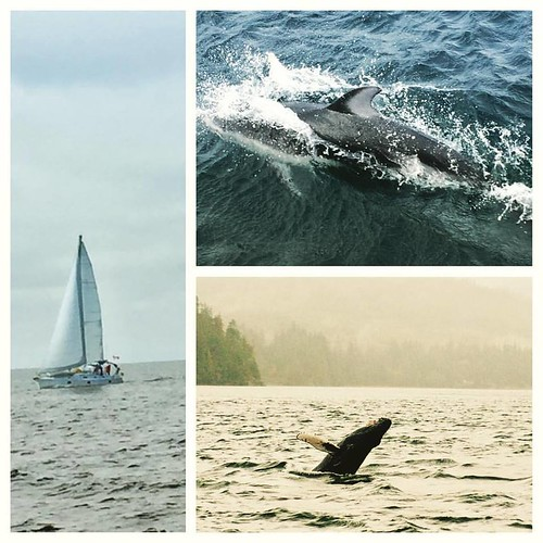 Round Vancouver Island: