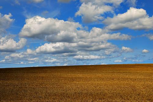 Field, Sky & Clouds | by richwat2011