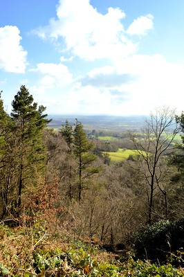Leith Hill Windy Gap View