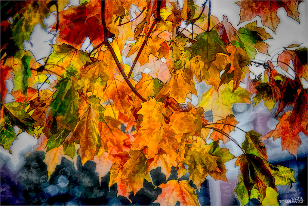 Artistic Fall