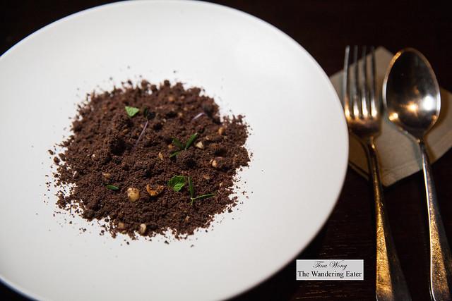 Tiramisu Soil